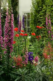 How Does Your Garden Grow? | Delphiniums, Gardens and English cottages