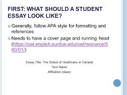 as a reference see chapters essay writing basics ppt video  first what should a student essay look like