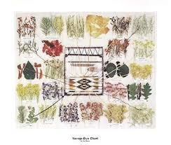Navajo Dye Chart Posters Of Santa Fe Myers Ella Navajo Dye Chart Fine