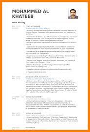 6 Cv Template Accountant Theorynpractice