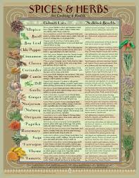 How To Use Herbs And Spices Chart Healing Herbs Spices Kitchen Chart