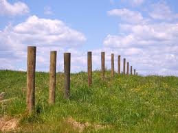 fence post. Inspiration Ideas Fencing Post With Newly Set Fence Posts, Waiting For Wire I