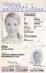 In Pleads Fake net Idscan Case Guilty To Man Virginia Id Welcome twCqTT