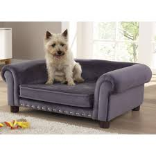 fancy dog beds furniture. Furniture Dog Couch Bed Elegant Luxury Sofa Beds Uk Mjob Blog Fancy
