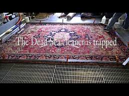 organic all natural oriental rug cleaning