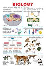 Biology Chart Educational Charts Series Biology