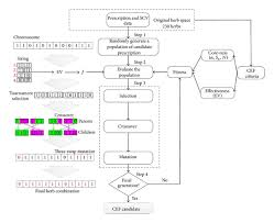 Application Of Genetic Algorithm For Discovery Of Core