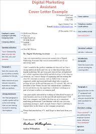 Digital Marketing Assistant Cover Letter Example Cv Plaza