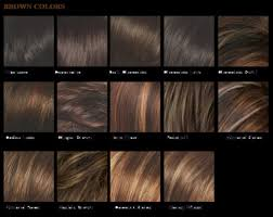 Medium Brown Hair Colour Chart Medium Brown Hair Color Chart Sophie Hairstyles 25386