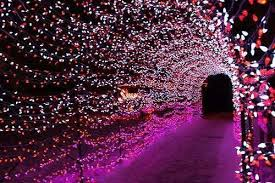 Small Picture flower petal tunnel mehndi enterance wedding decor ideas india