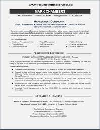 Excellent Decoration Management Consulting Resume It Consultant