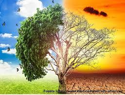 Resultado de imagen de medio ambiente