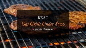 best gas grills under 300 dollars reviews
