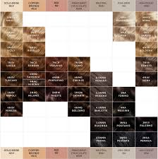 Brown Color Chart Wheel Hair Color Chart In 2019 Mixing Hair Color Hair Color
