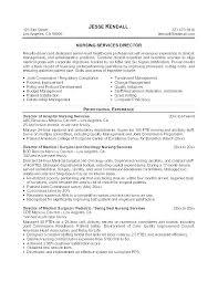 Objective For Rn Resume Nurse Resume Objective Objective Nursing