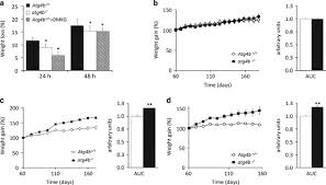 autophagy couteracts weight gain