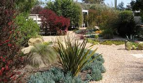 Small Picture Unique Garden Design Drought Tolerant Up On The For