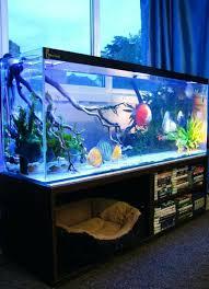 Aquarium Interior Design Ideas Interior Design Fish Tank Bed Frame And With Interior