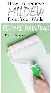 cleaning mold
