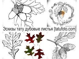 эскизы тату дубовые листья рисунки для татуировки фото значение