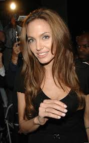 Angelina Jolie Hair Style best 25 angelina jolie hairstyles ideas angelina 6329 by stevesalt.us