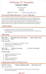 Profile On Resume   Free Resume Example And Writing Download