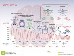 Brain Waves Frequency Chart Delta Frequency Stock Illustrations 9 Delta Frequency