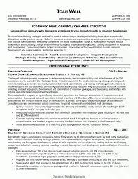 Sample Non Profit Resume non profit resume Eastkeywesthideawaysco 2