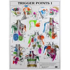 Trigger Points 2 X Charts I Ii