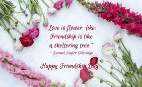 Quotes About Friendship With Pictures Impressive Happy Friendship Day 48 48 Quotes On Friendship To Make Your