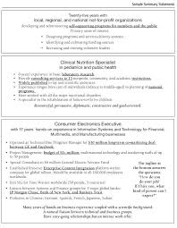 Resume Summary Template Enchanting Summary Resume Template Mmventuresco