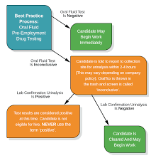 Drug Testing Flow Chart Best Practice Process Premier Biotech