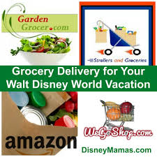 having groceries delivered for your disney vacation is a great money saving option