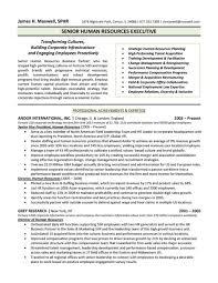 Executive Resume Examples 5 Chief Cv Uxhandy Com Human Resources
