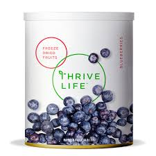Freeze Dried Blueberries Fruits