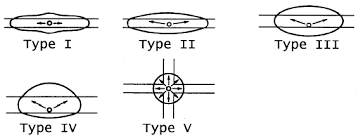 Type of lighting Led Light Light Distribution Patterns Distribution Types Maxlite University Common Lighting Terms Definitions Maxlite University