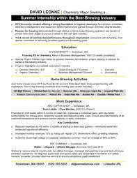 Best Radio Dj Resume Contemporary Professional Resume Example