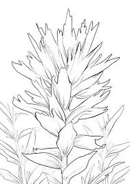 Paint Brush Coloring Page Paintbrush Coloring Page Paintbrush