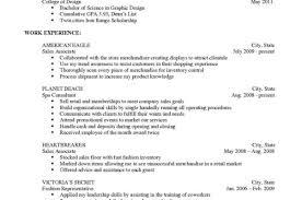 Create Free Online Resume Resume Template