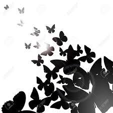 夏の黒蝶と背景 ベクトル イラスト クリップアート