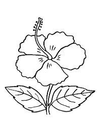 Small Picture Hibiscus Flower Craft Printable Coloring Coloring Pages