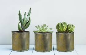 metal zinc planters are amazing pieces for rustic desert or country style decor looking for inspiration on garden pots