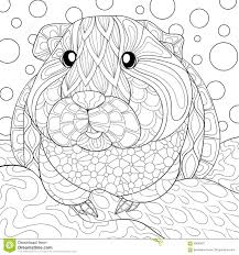 Adult Coloring Page Guinea Pig Stock Vector - Image: 90020671