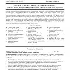 Best Agile Scrum Master Resume Sample Pictures Inspiration Entry
