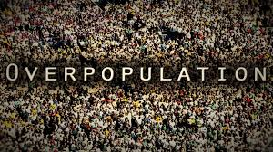 Is Human Overpopulation A Problem The Startup Medium