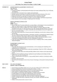 Salesforce Resume Sample Salesforce Consultant Resume Samples Velvet Jobs 1