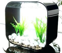 fish tank stand design ideas office aquarium. Small Fish Aquarium For Home Tank Decoration Ideas Stand Design Office