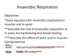26 anaerobic respiration objectives state equations