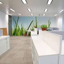 pictures for an office wall. Grass Wall Mural In Office Space Pictures For An B