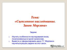 задачи по теме наследование по закону Портал правовой информации  задачи по теме наследование по закону фото 3